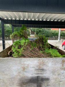 富山県富山市、剪定した枝の不用品回収現場写真